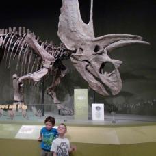 Dinosaur School